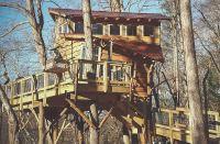 blue-ridge-treehouse-large.jpg