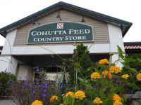 cohutta-country-store.jpg