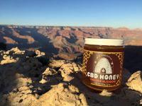 apis-honey-colorado.jpg