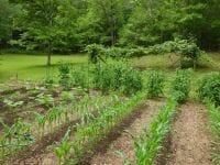 bruce-mountian-farm.jpg