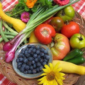 Downtown Blue Ridge Farmers Market @ Blue Ridge City Park | Blue Ridge | Georgia | United States