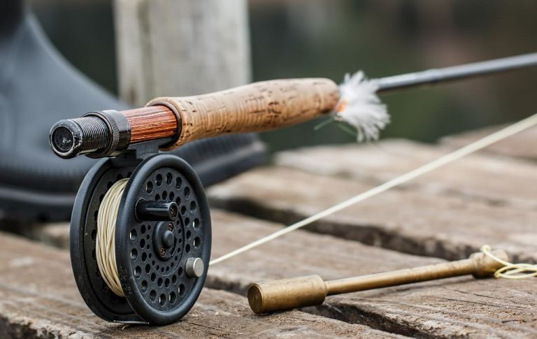 Finding the Fish: How to Catch Your Limit in the Trout Capital of Georgia